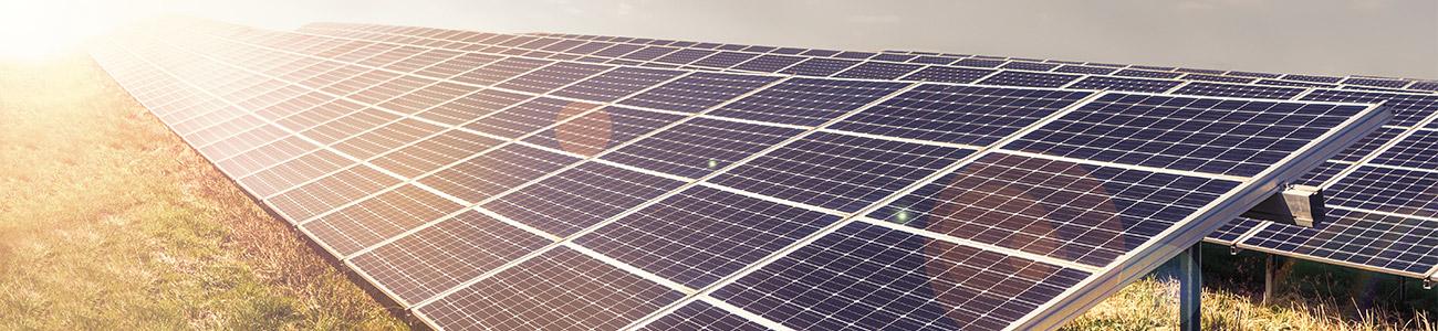 Photovoltaic park: Solar paneles with warm sunlight.  Renewable